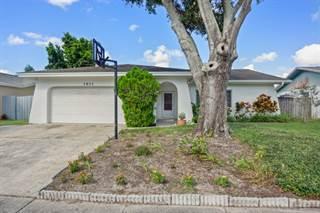 Single Family for sale in 1611 Orangecrest Ave, Palm Harbor, FL, 34683