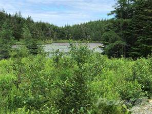 Lots And Land for sale in 4 Lilly Pond, Carbonear, Newfoundland and Labrador, A1A 1A8