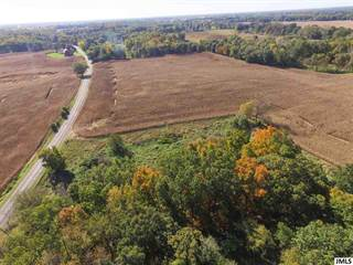 Farm And Agriculture for sale in V/L KALMBACH, Grass Lake, MI, 49240