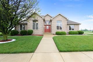 Single Family for sale in 911 Brian Drive, Manteno, IL, 60950
