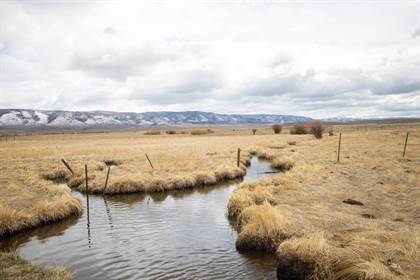 Farm And Agriculture for sale in 1248 JCR 6E, Cowdrey, CO, 80434