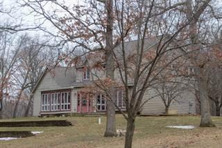 Single Family for sale in 728 Whipple Road, Bronson, MI, 49028