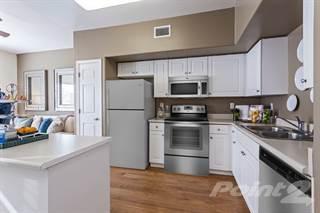 Apartment for rent in Camden Vineyards - A1, Murrieta City, CA, 92562
