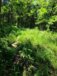 Lots And Land for sale in 21983 Highway 74, Wesley, AR, 72773