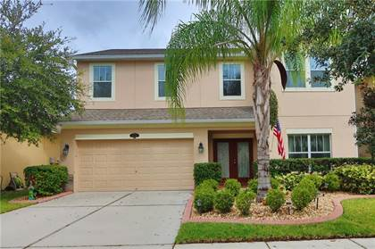 Residential Property for sale in 10740 PICTORIAL PARK DRIVE, Tampa, FL, 33647