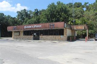 Comm/Ind for sale in 17650 Highway 19, Fanning Springs, FL, 32693