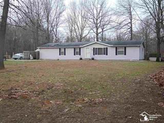 Single Family for sale in 6268 Sellers, Ottawa Lake, MI, 49267