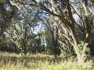 Land for sale in TBD 34th St., Live Oak, FL, 32060