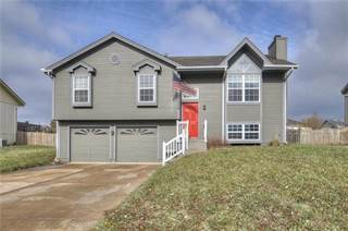 Single Family for sale in 1304 Willow Drive, Greenwood, MO, 64034