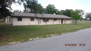 Single Family for sale in 220 Brown Road, Greater Ona, FL, 33873