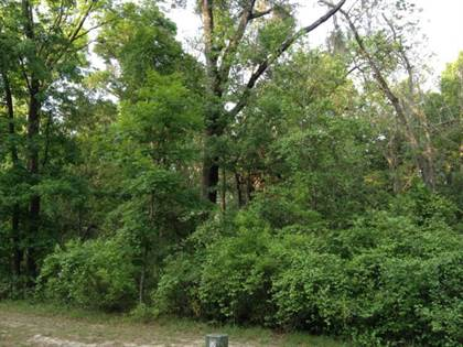 Lots And Land for sale in Lot 26 Katherine Way, Fanning Springs, FL, 32693