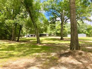Residential Property for sale in 114 HUFF LANE SW, Roxie, MS, 39661