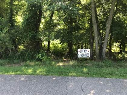 Lots And Land for sale in LOT 21 BLUEBERRY HILLS, Sturgis, KY, 42459