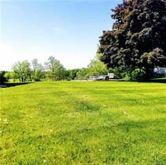 Land for sale in 10054 HEGEL Road, Goodrich, MI, 48438