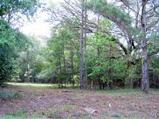 Farm And Agriculture for sale in 00 NW 73rd Trail, Bell, FL, 32619