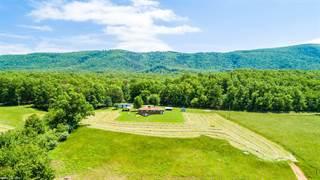 Single Family for sale in 1667 Johns Creek Drive, New Castle, VA, 24127