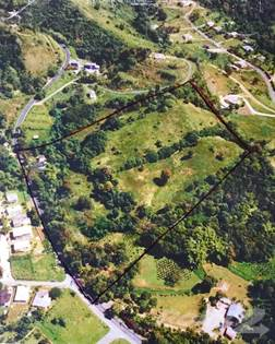 Lots And Land for sale in Land in 181 Road, San Lorenzo, San Lorenzo, PR, 00754