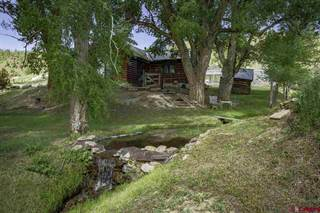 Single Family for sale in 307 County Road 28, Powderhorn, CO, 81243
