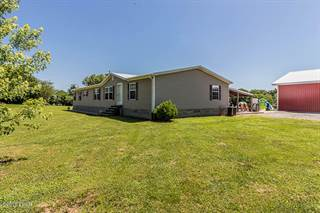 Residential Property for sale in 275 Texas Eastern Road, Buncombe, IL, 62912
