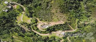 Farm And Agriculture for sale in Hacienda in Barrio Piedras Blancas, Aguada, Aguada, PR, 00602