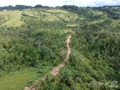 Lots And Land for sale in Bo. Palmarejo, Corozal PR, Corozal, PR, 00783