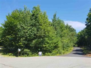 Land for sale in 00 Hemlock Drive, Wolfeboro, NH, 03894