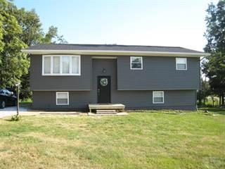 Single Family for sale in 1410 Casley Drive, Hamilton, IL, 62341