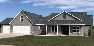 Single Family for sale in 11132 Kamoe Lane, Neosho, MO, 64850