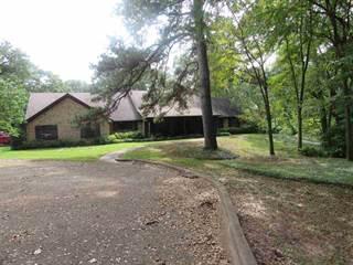 Single Family for sale in 602 N TYLER, Big Sandy, TX, 75755