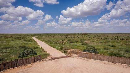 Farm And Agriculture for sale in 802 S Lake Road, Carlsbad, NM, 88220