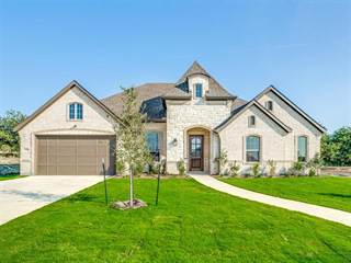 Single Family for sale in 12729 Elm Springs Trail, Fort Worth, TX, 76052