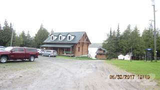 Comm/Ind for sale in Wabaskang Lake, Opasquia - Polar Bear Park, Ontario