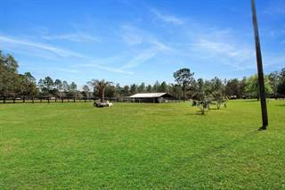 Farm And Agriculture for sale in 5201 SW 171st Court, Ocala, FL, 34481