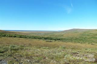 Land for sale in mile 8 Nome-Teller Highway, Nome, AK, 99762