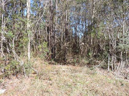 Farm And Agriculture for sale in 0 Road 108 Rd, Biloxi, MS, 39532