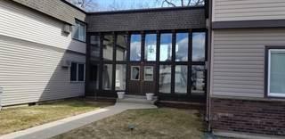 Condo for sale in 131 East Mill Street 103, Wauconda, IL, 60084