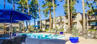 Apartment for rent in Shasta Lane Apartments - Plan A, La Mesa City, CA, 91942