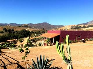Farm And Agriculture for sale in Rustic Ranch Home, Playas de Rosarito, Baja California