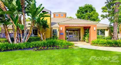 Apartment for rent in Sofi Irvine, Irvine, CA, 92614