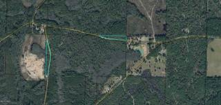 Land for sale in 00 John Marsh Road, Bonifay, FL, 32425