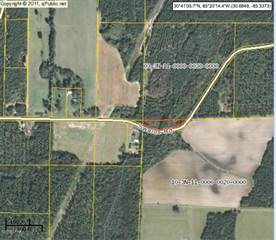 Land for sale in * SWAILLS, Alford, FL, 32420
