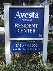 Apartment for rent in Avesta Rivergate - Paradise Bay, Palm River-Clair Mel, FL, 33619