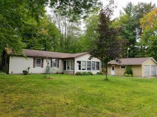 Single Family for sale in 7415 ROSE LANE, Harrison, MI, 48625