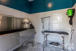 Apartment for rent in The Retreat at Danada Farms - Symphony, Wheaton, IL, 60189
