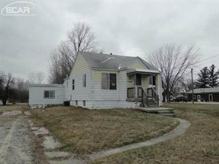 Land for sale in 9051 N Dort, Thetford, MI, 48458