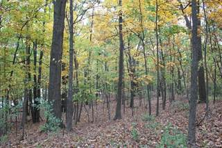 Land for sale in Lot 16 Hickory Valley Road, Milford, MI, 48380