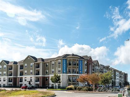 Apartment for rent in CREEKSIDE VUE, New Braunfels, TX, 78130