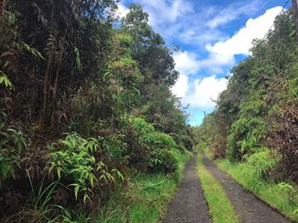 Lots And Land for sale in HAWAII ST Lot : 14, Mountain View, HI, 96771