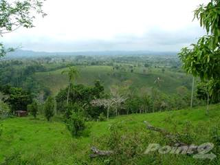 Farm And Agriculture for sale in Price Reduction! Secluded Nature Preserve with Little House & Rushing River for Sale, David, Chiriquí