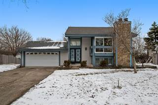 Single Family for sale in 13940 West Timberlane Court, Homer Glen, IL, 60491